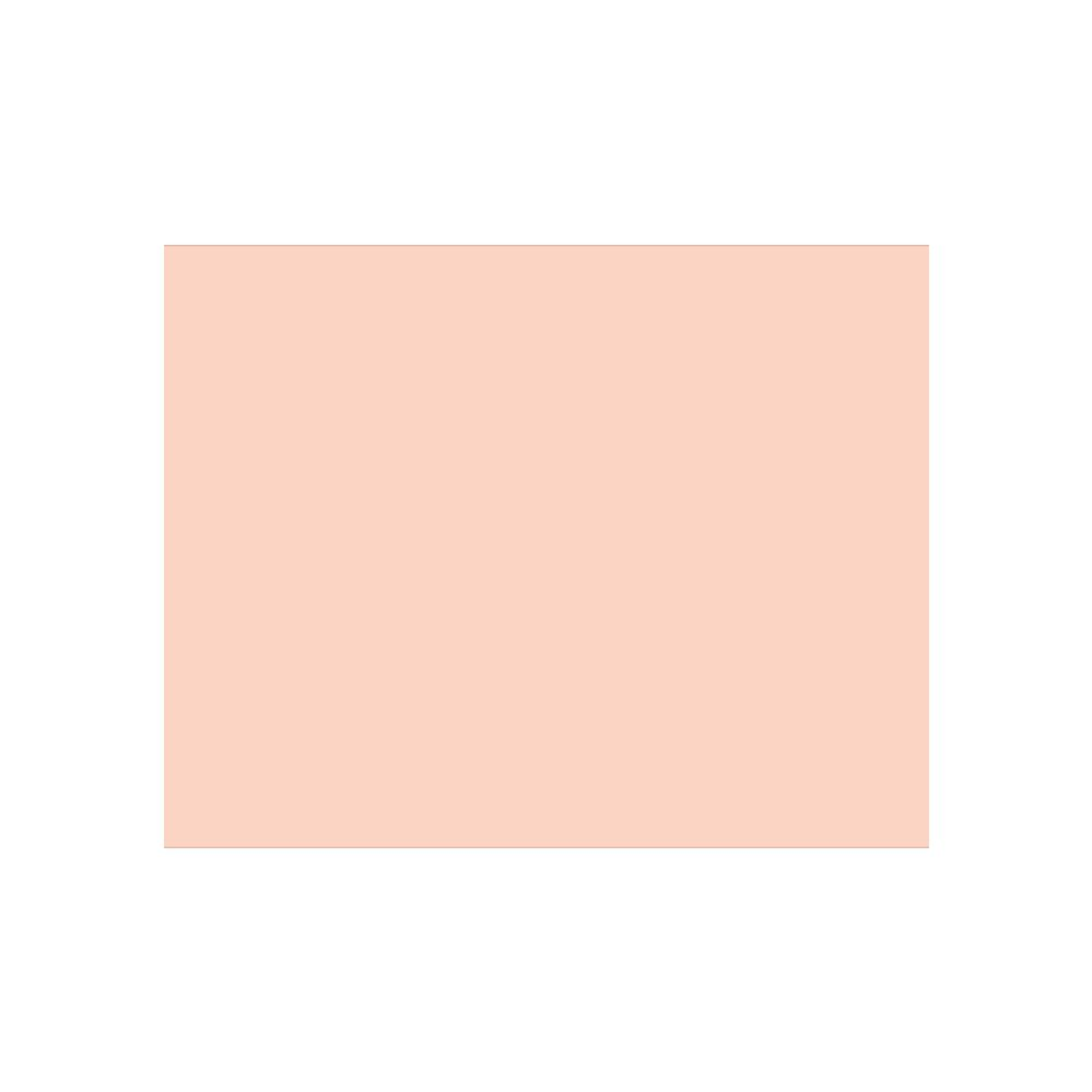 """100 Units of BAZIC 22"""" X 28"""" Pink Poster Board"""