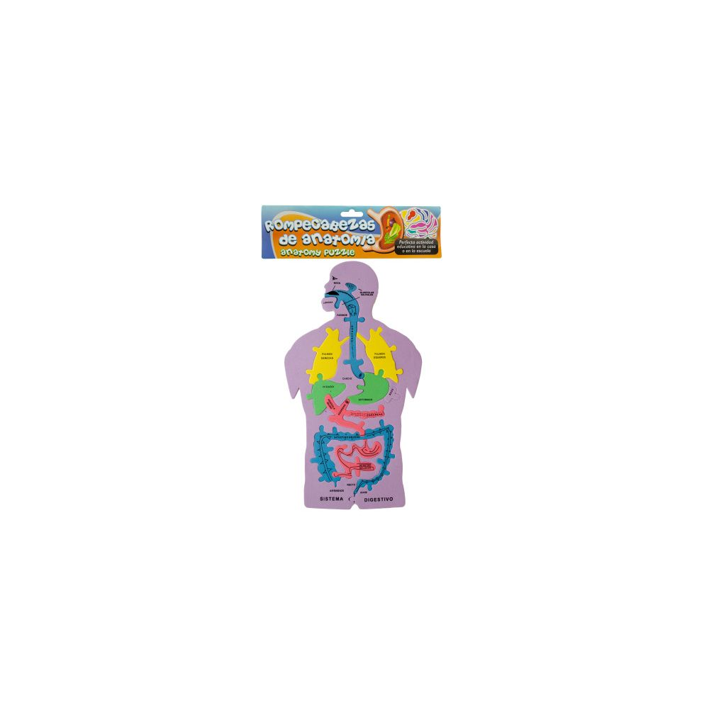 72 Units of Spanish Anatomy Foam Puzzle - Puzzles - at ...