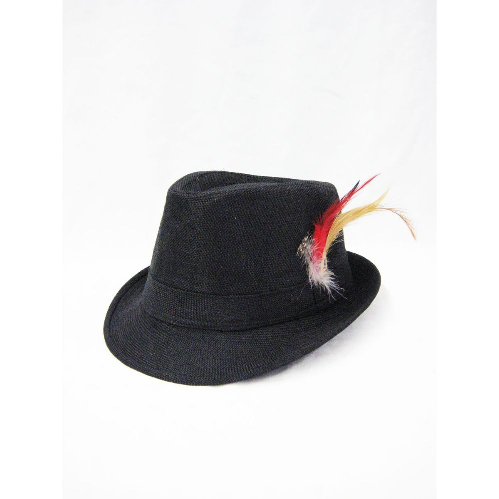 d1b53d4ad5c 36 Units of Wool Fedora Hat with Feather Black - Fedoras