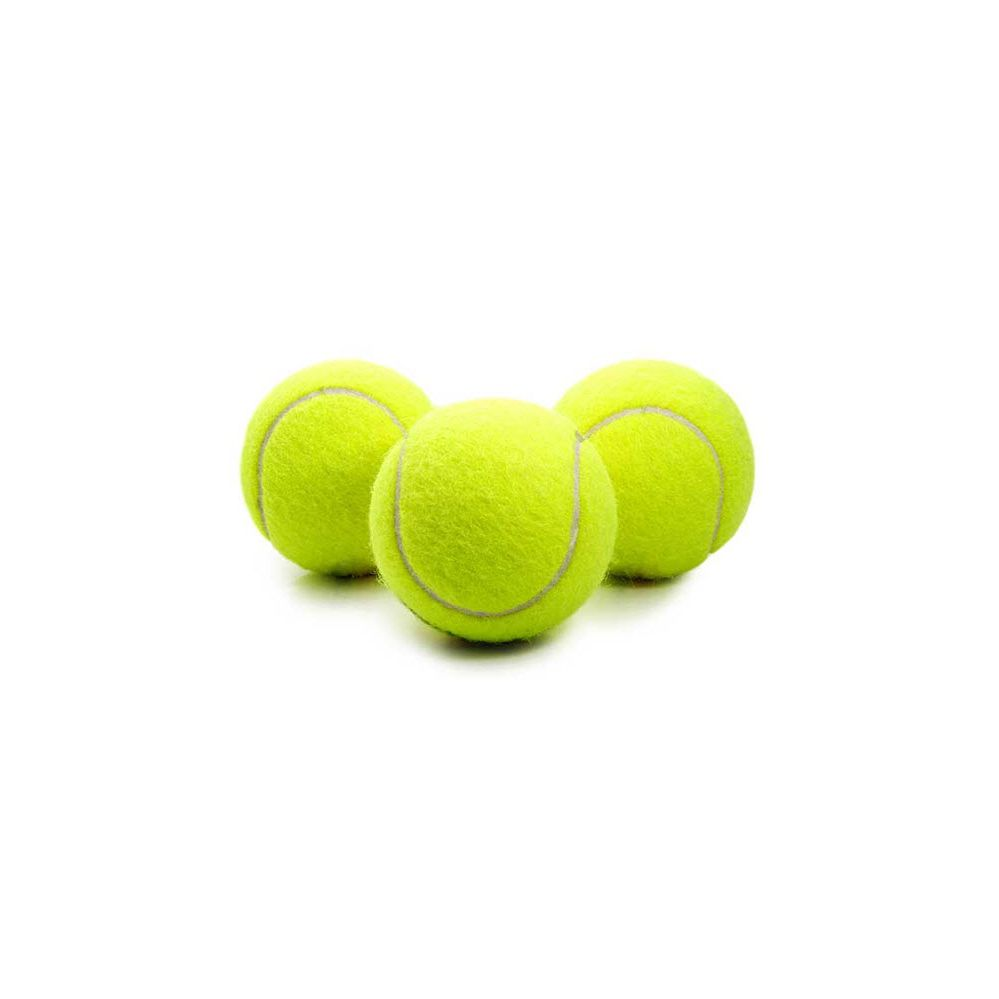 48 Units Of Wholesale Dog Toy Tennis Ball For Dog Play Pet Toys