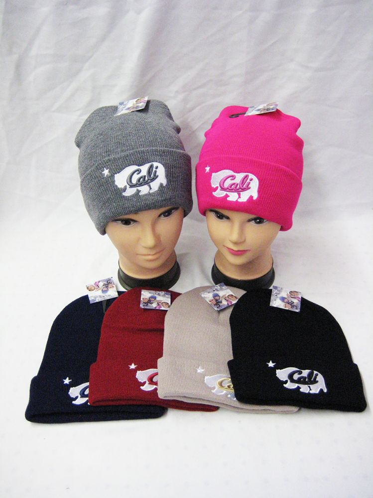 614cf3a48c0 36 Units of Womans Winter Hat In Assorted Colors - Winter Beanie Hats