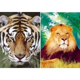 20 Units of 3D Picture-Lion/Tiger - Wall Decor