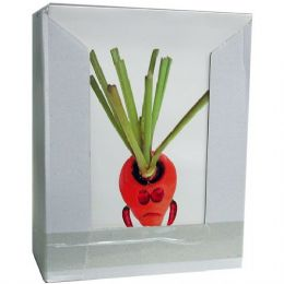 60 Units of 2 Pocket Folders, Fun Fruits & Vegetables, In Display - Folders and Report Covers