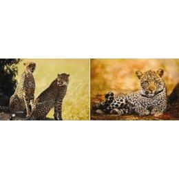 20 Units of 3D Picture-Cheetah Laying/2 Cheetahs - Wall Decor