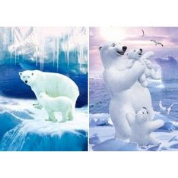 50 Units of  3D Picture-Polar Bears - Wall Decor