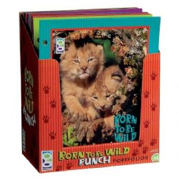 96 Units of Born To Be Wild Bunch Folder - Folders and Report Covers