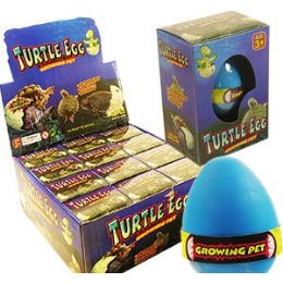 48 Units of Growing Pet Turtle Eggs - Growing Things