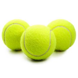 48 Units of Wholesale DOG TOY Tennis Ball For DOG play - Pet Toys