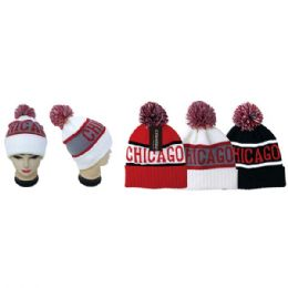 48 Units of Knit Hat Chicago - Fashion Winter Hats