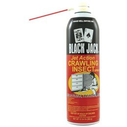 24 Units of Blackjack crawling insect - Pest Control