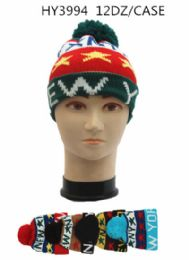24 Units of Unisex Winter Hat Assorted Color One Print - Fashion Winter Hats