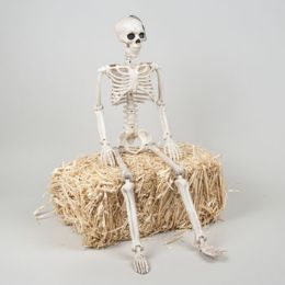 12 Units of Skeleton Giant 35in Realistic Decor