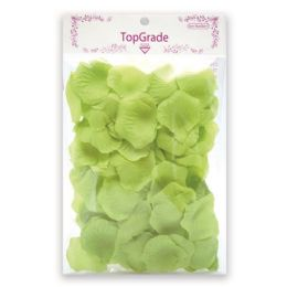 144 Units of Satin Rose Petal Lime - Valentine Cut Out's Decoration