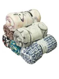 24 Units of Assorted Printed Fleece Blankets Size 50 x 60 - Fleece & Sherpa Blankets