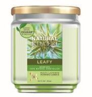 6 Units of Natural Killer 130z Candle With Clean Air Technology Odor Eliminator, Leafy - Candles & Accessories
