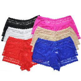 72 Units of Angelina Plus Size Sexy Lace Boxer Briefs - Womens Panties & Underwear