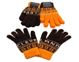 24 Units of Cleveland Knitted Glove In Large - Knitted Stretch Gloves