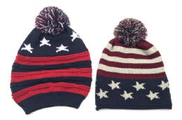 24 Units of USA Knit Winter Hat - Winter Beanie Hats
