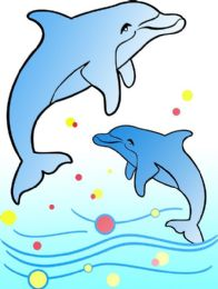 50 Units of Medium Dolphins Sand Painting Card - Arts & Crafts