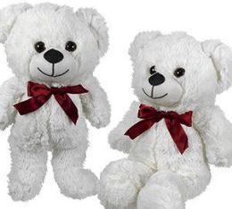 24 Units of Plush White Bears - Plush Toys