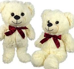 36 Units of Plush Beige Bears - Plush Toys