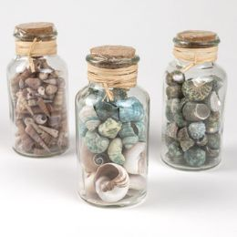 12 Units of Seashells In Corked Topped Jar - Home Decor