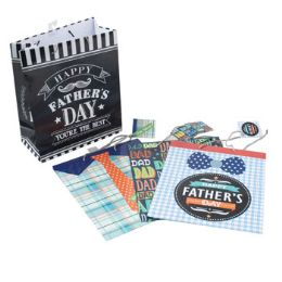 48 Units of Gift Bag Fathers Day - Gift Bags Everyday