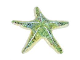 24 Units of Wild Republic Plush Green Glitter Starfish - Plush Toys