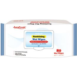 24 Units of Antibacterial Wipes 80ct - PPE Sanitizer