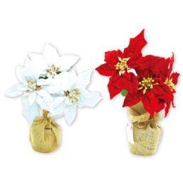 24 Units of Xmas Tree Poinsettia Plant - Christmas Decorations