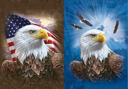 40 Units of 3D Picture Patriotic Eagle Soaring Eagles - Home Decor