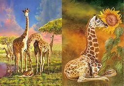 40 Units of 3D Picture Giraffe Family Baby Giraffe - Home Decor