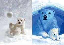 40 Units of 3D Picture Polar Bear Cub Polar Bear Mama And Cub - Home Decor