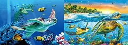 40 Units of 3D Picture Sea Turtles - Home Decor