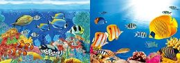 40 Units of 3D Picture Tropical Fish with Coral - Home Decor