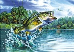 40 Units of 3D Picture Jumping Bass - Home Decor