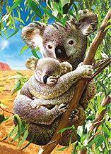 40 Units of 3D Picture Koalas - Home Decor