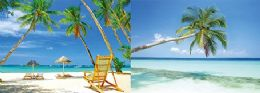 40 Units of 3D Picture Palm Trees and Ocean - Home Decor