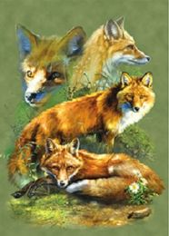 40 Units of 3D Picture Red Fox - Home Decor