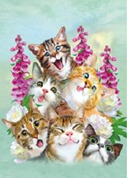 40 Units of 3D Picture Six Happy Kittens - Home Decor