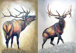 40 Units of 3D Picture Elk - Home Decor