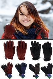 48 Units of Insulated Winter Gloves in Assorted Colors - Winter Gloves