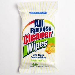 24 Units of Wipes 42 Count All Purpose Cleaner Daily Care - Cleaning Products