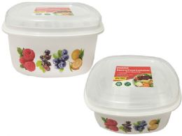 48 Units of Square Printed Food Container - Food Storage Containers
