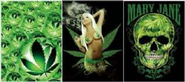 12 Units of Mary Jane Canvas Picture Wall Art - Wall Decor