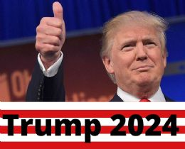 120 Units of Trump 2024 Thumbs Up Bumper Stickers - Stickers