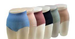 48 Units of Ladies' Seamless Hi-Waist Briefs - Womens Panties & Underwear