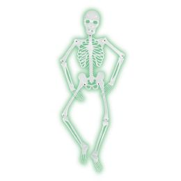 6 Units of Mr Bones-A-Glo Skeleton all-weather nite-glo plastic - Bulk Toys & Party Favors