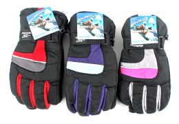 24 Units of Women's Ski Gloves - Ski Gloves