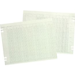 Wilson Jones G10-20 Columnar Sheet - Office Supplies